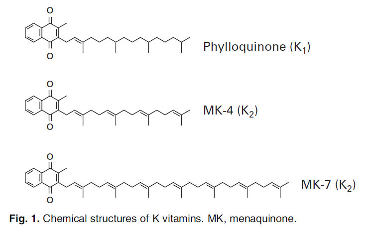 Structure of VitaminK 2